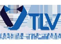 Công Ty TNHH Thương Mại Dịch Vụ Trí Lực Việt